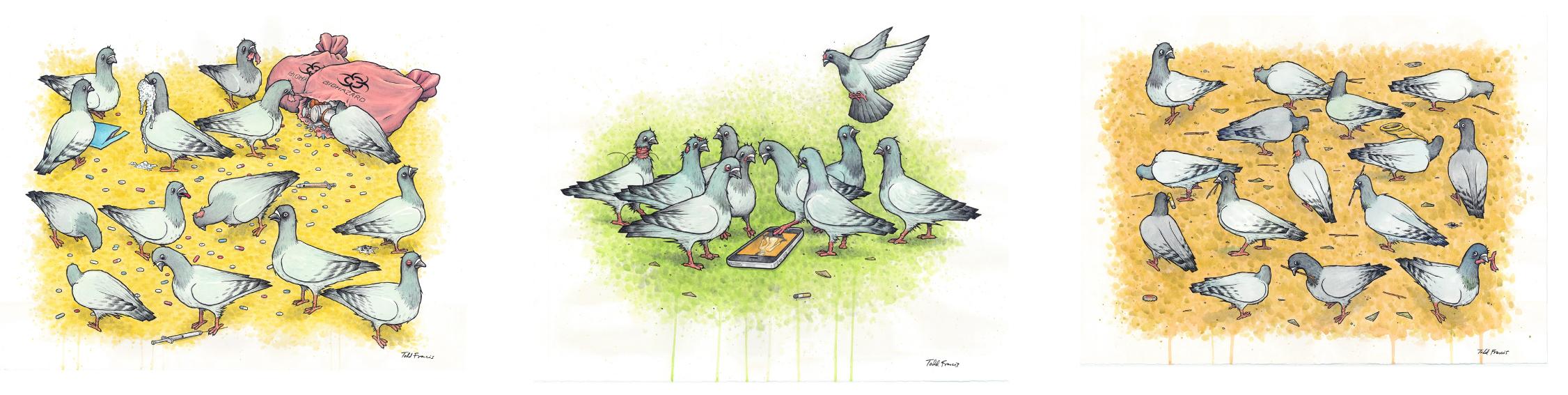 news_pigeons-set
