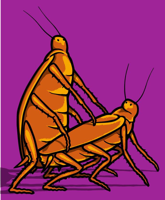 roaches print